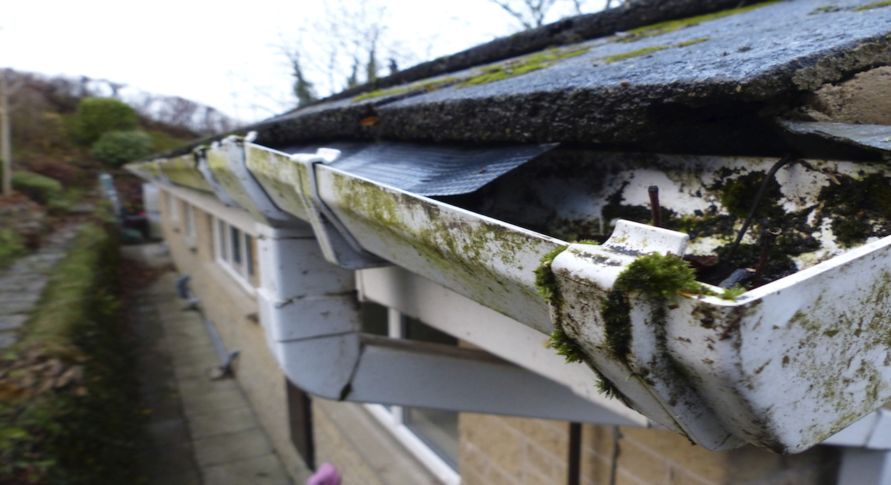 Property Maintenance Tips for Spring