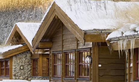 How to repair common winter damage