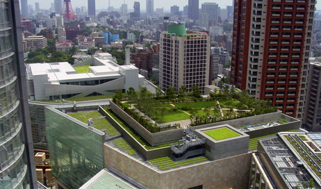 How Green Roofs are both an aesthetically appealing upgrade and can lower costs